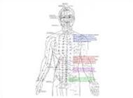 Acupuncture Treatment Oakville