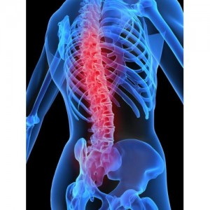 back-pain-solutions-spinal